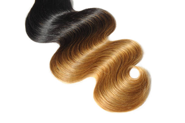 Body wavy two tone ombre black with brown human hair weave extension bundles stock photo