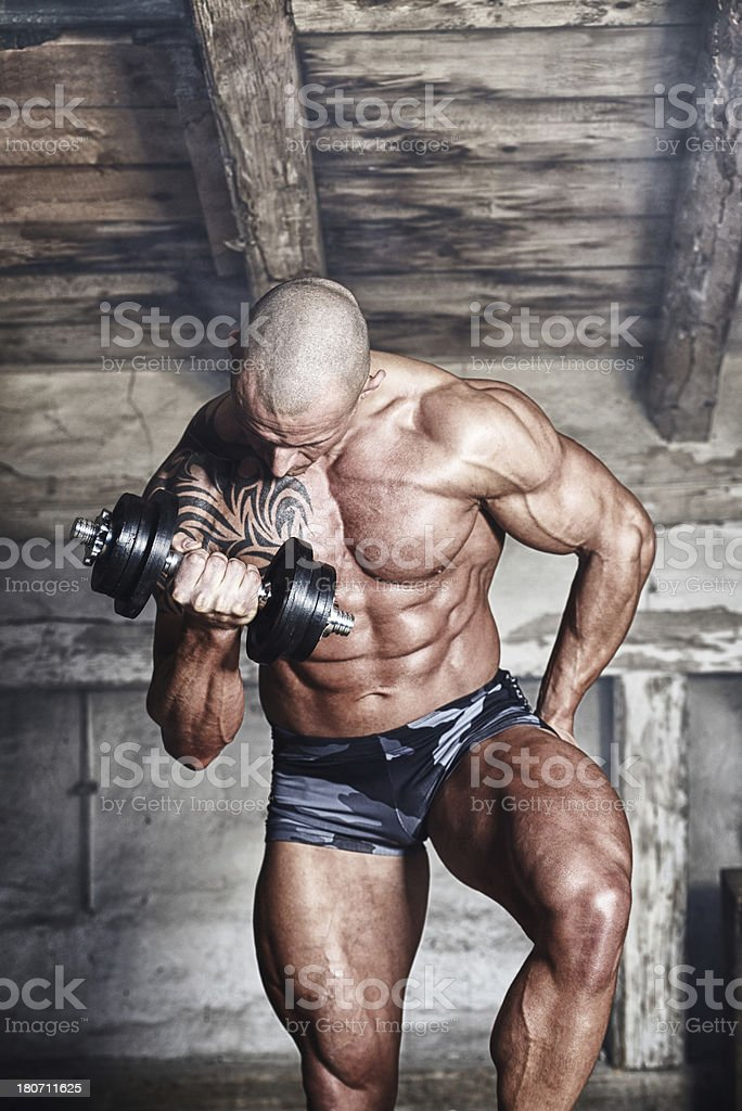 Bodybuilder at his fitness workout royalty-free stock photo