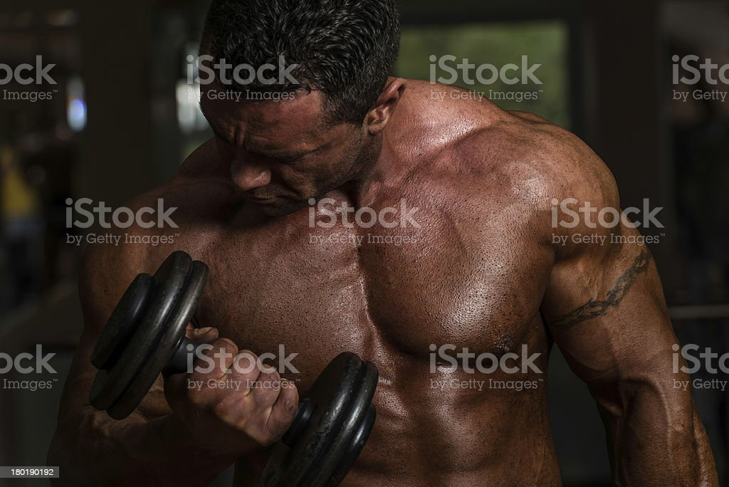 bodybuilder doing heavy weight exercise for biceps with dumbbell royalty-free stock photo