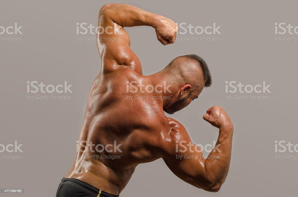 Bodybuilder Showing His Backshoulders Triceps And Biceps Muscles