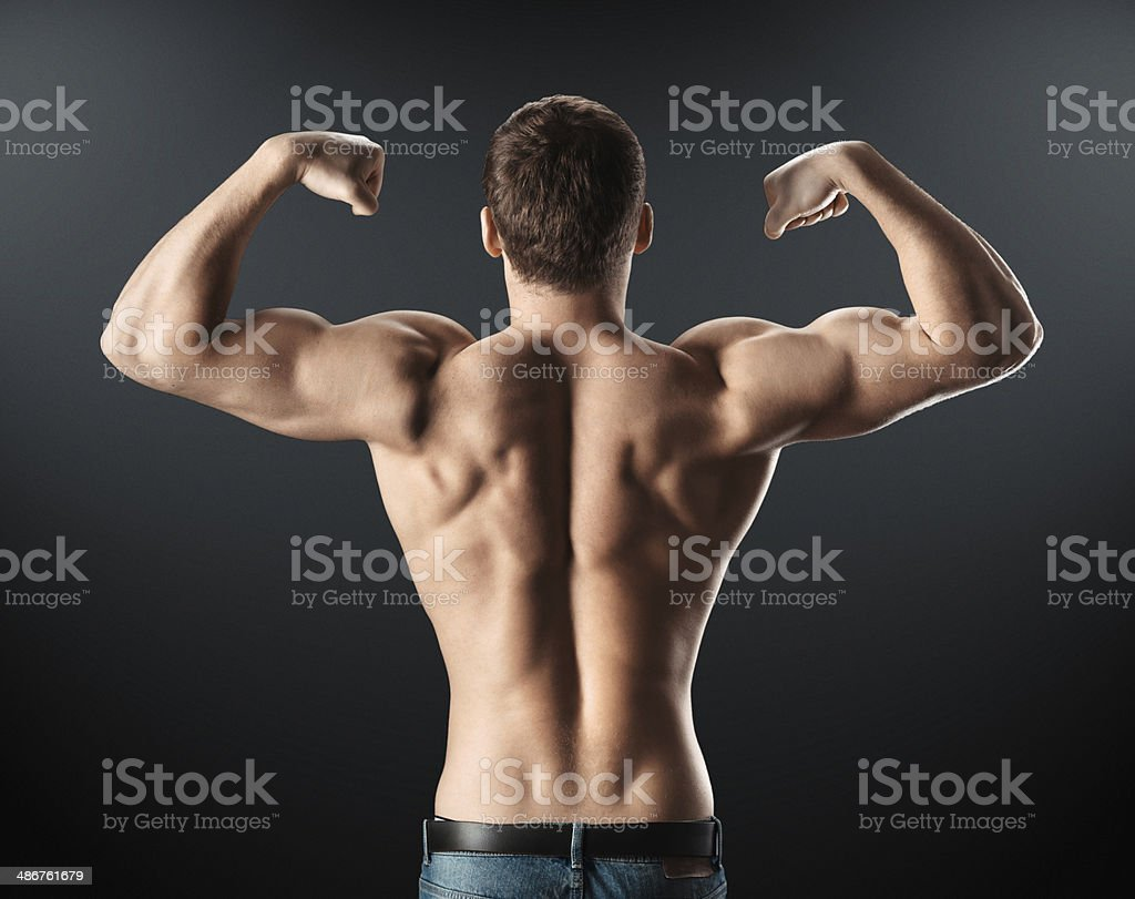 筋肉 背中