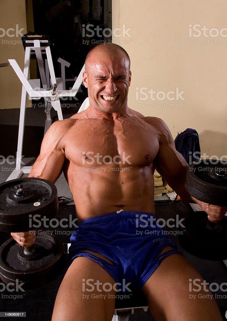 Bodybuilder training royalty-free stock photo