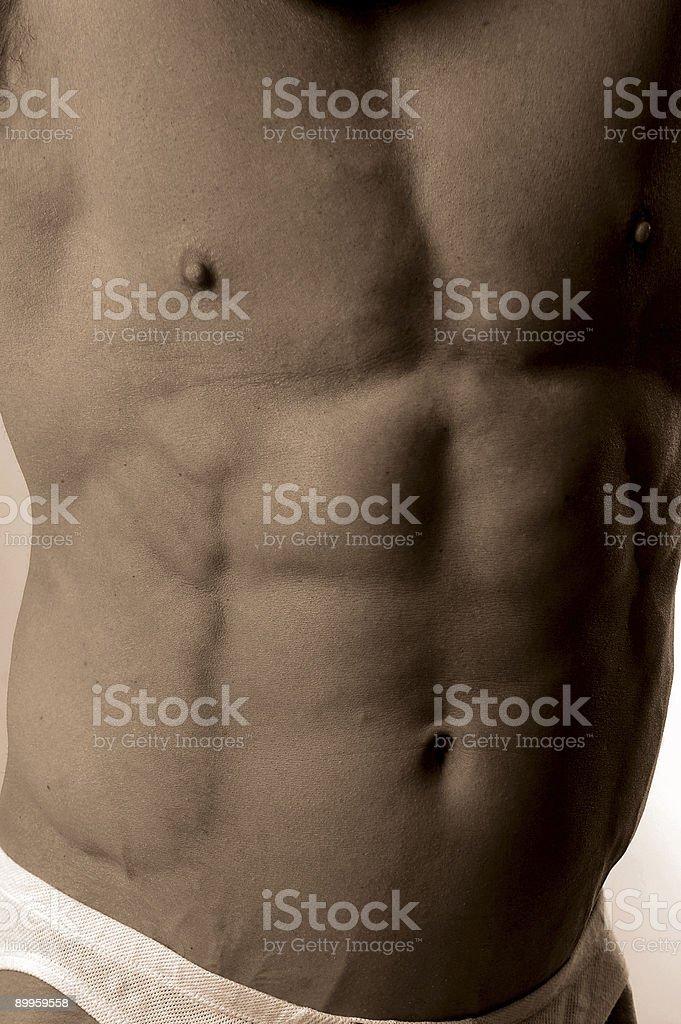 bodybuilder's abs royalty-free stock photo