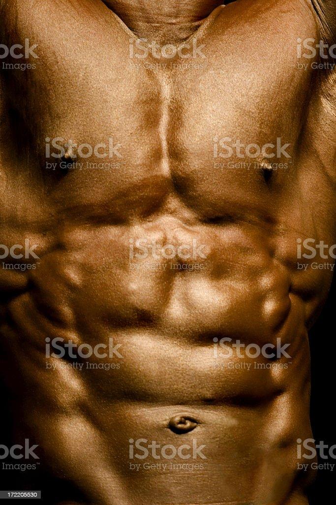 Bodybuilding series royalty-free stock photo