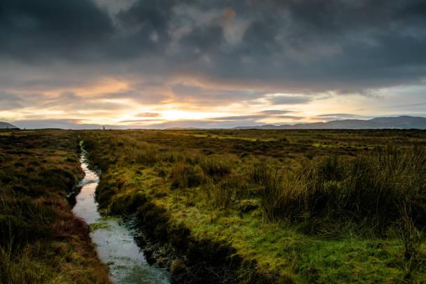 Bog Lands stock photo