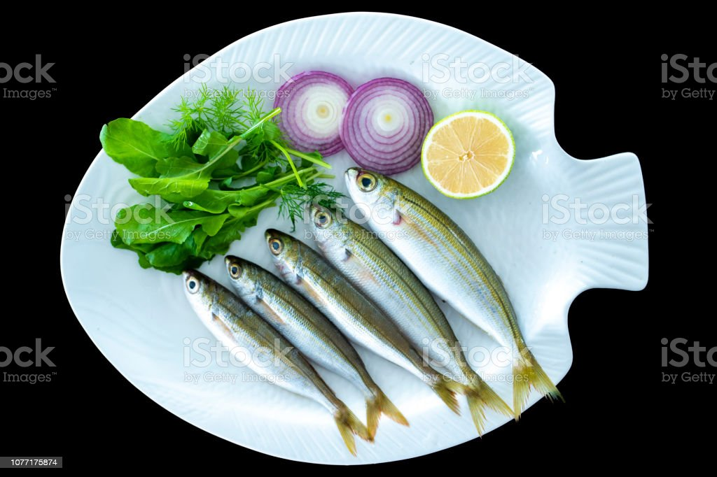 Bogue fish also known as Boops boops with rockets leaves served on white plate stock photo