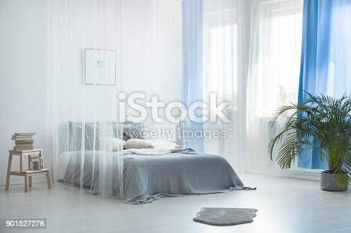 istock Bohemian loft with bed canopy 901527276