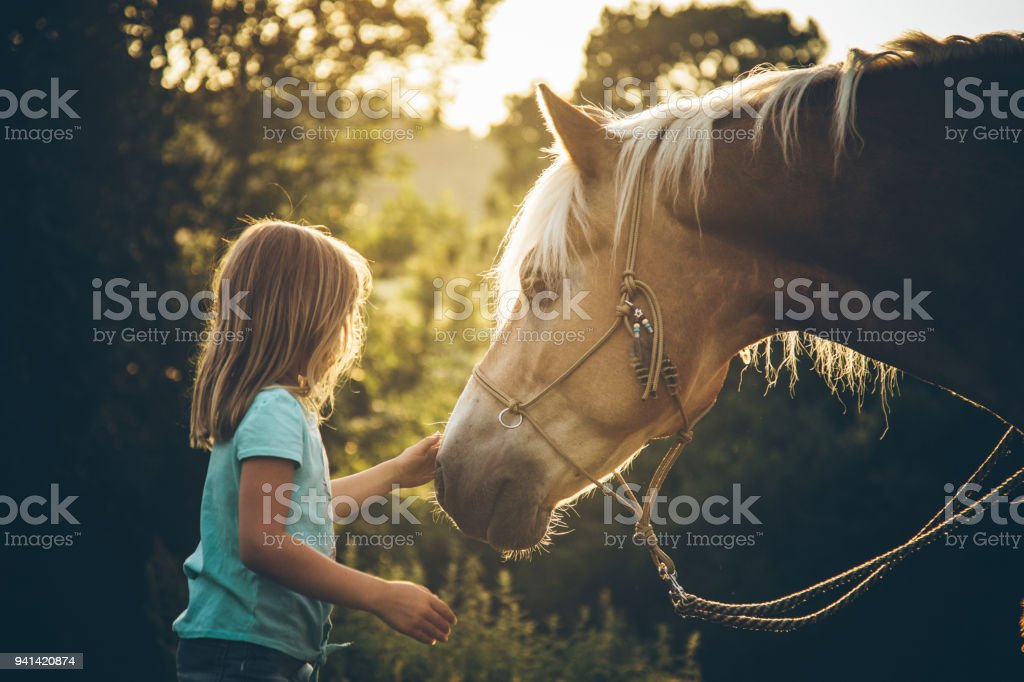 Boho Girl with her horse stock photo