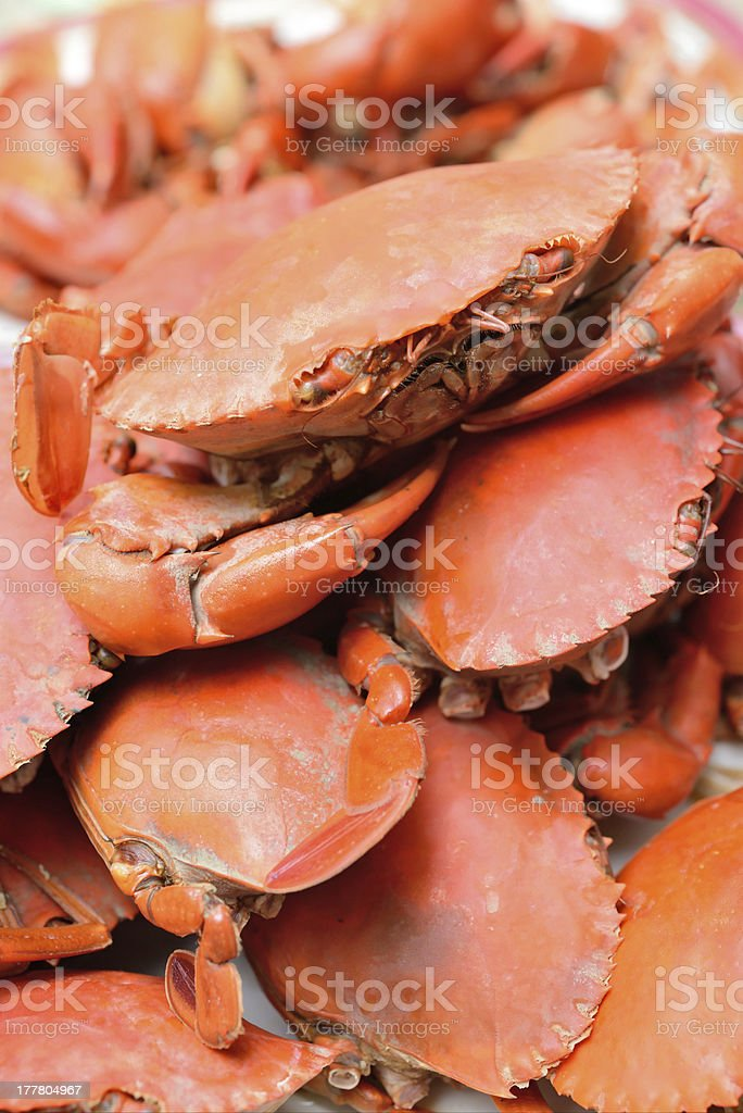 Boiled crab royalty-free stock photo