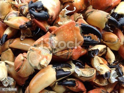 Giant rock crab,seafood prepared,crab food