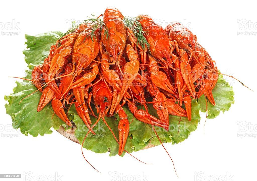 Boiled Crayfish on white background stock photo
