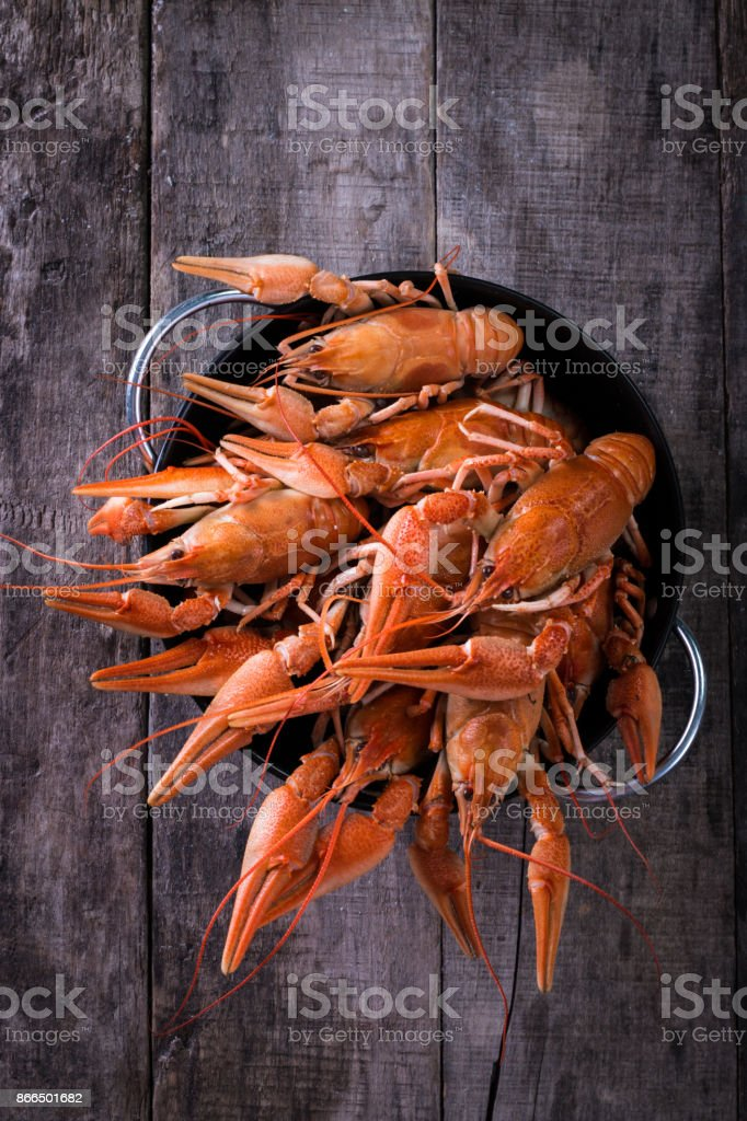 Boiled crayfish with dill on dark background stock photo