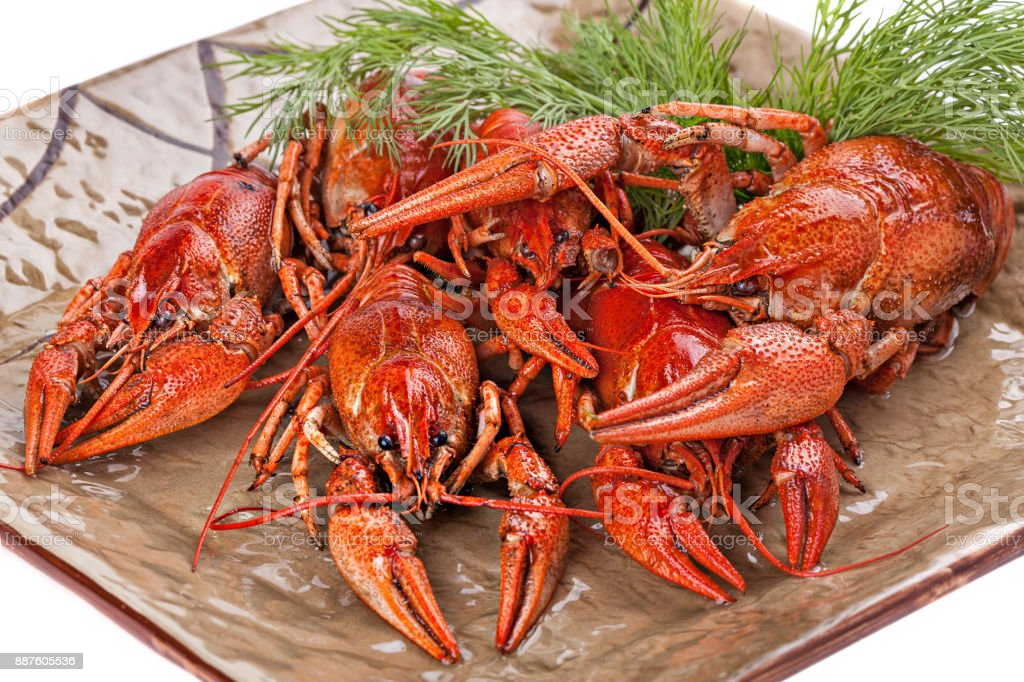 Boiled  crayfish with dill  on the plate. stock photo