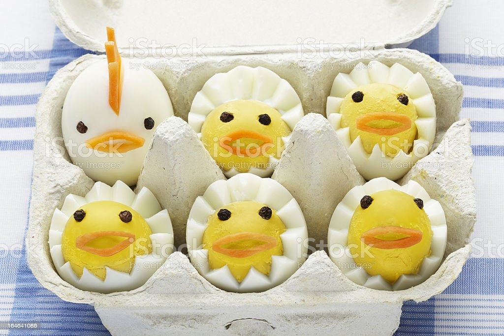 Boiled egg chickens in box stock photo