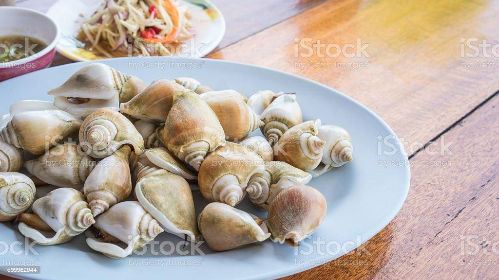 Boiled fresh Laevistrombus canarium or sea snail stock photo