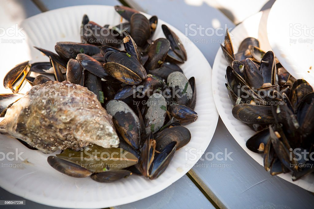 Boiled mussels royalty-free stock photo
