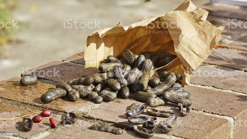 Boiled Peanuts in a Brown Bag stock photo