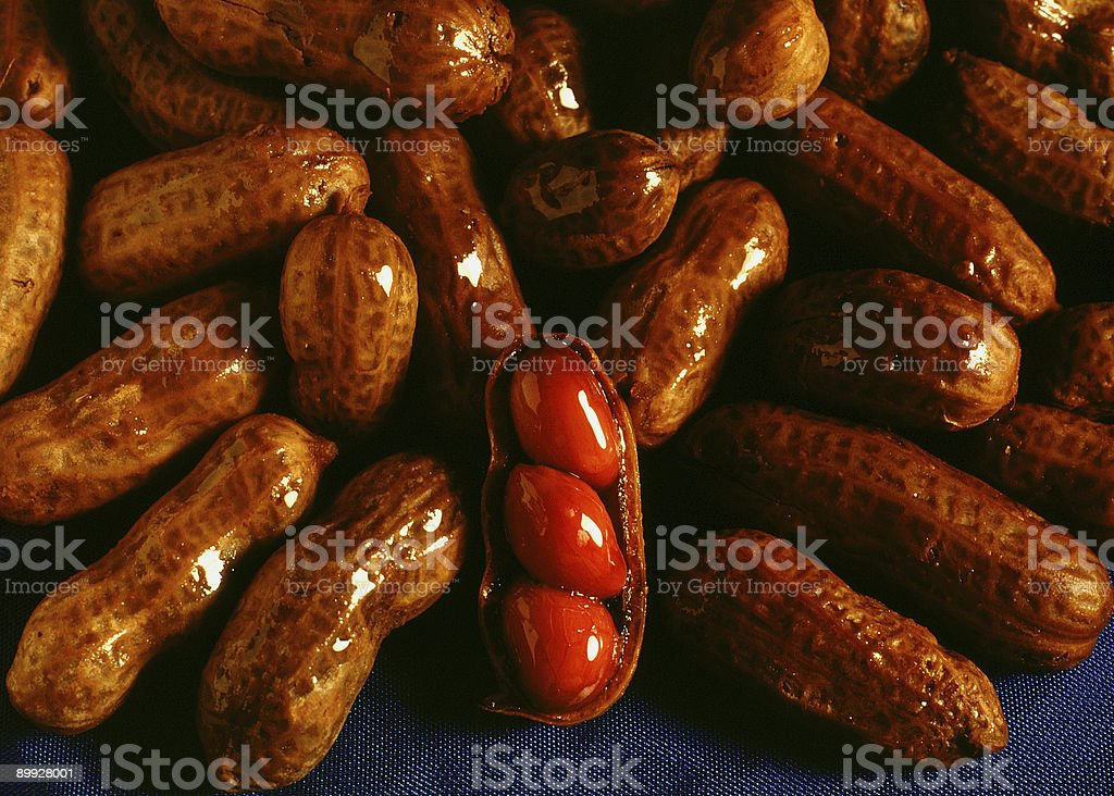 Boiled Peanuts royalty-free stock photo