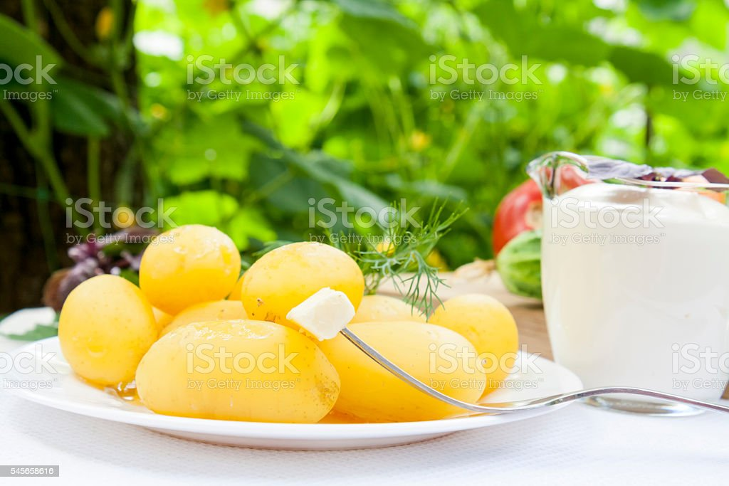 Boiled potatoes with dill and butter royalty-free stock photo