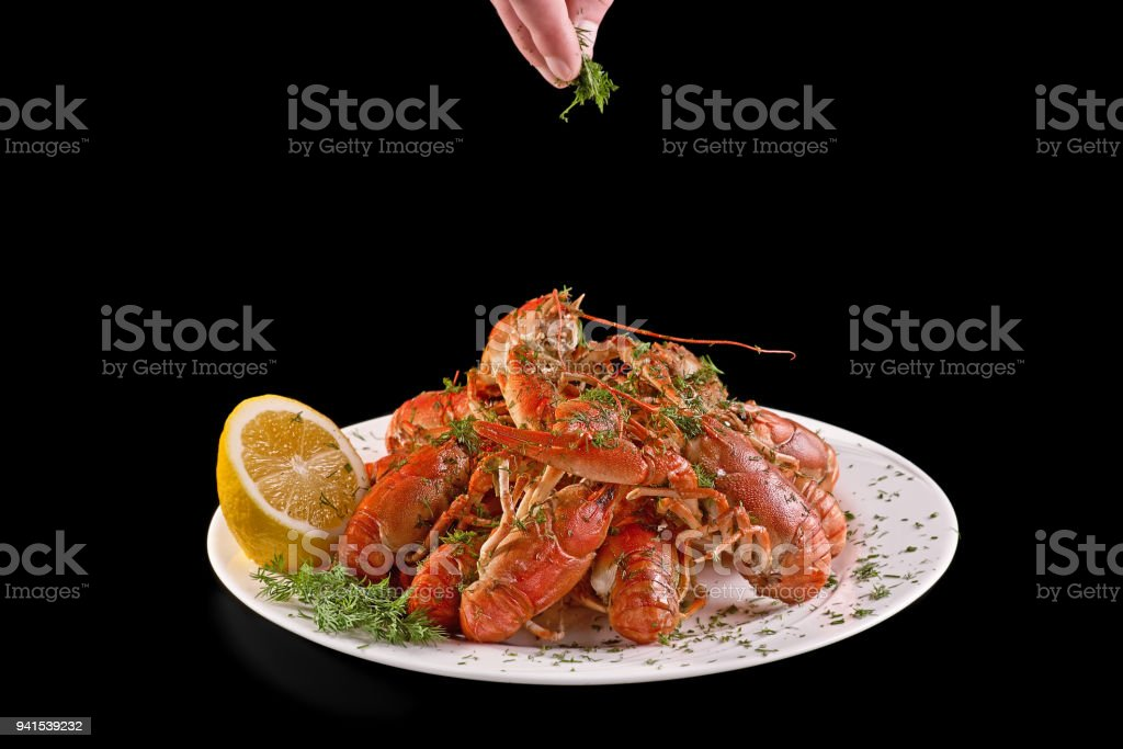 Boiled red crayfish or crawfish to beer and sprinkle them with herbs on a black background. Close it. Crayfish party, restaurant, cafe, pub-menu, food concept. copy space. stock photo