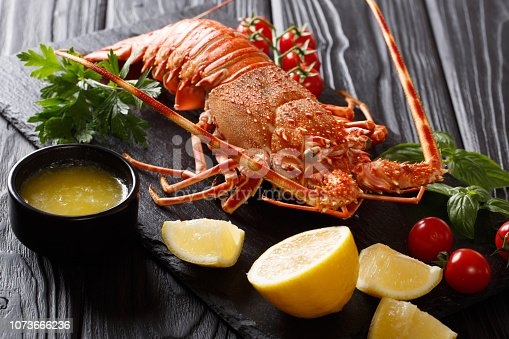 boiled Red or Spiny Rock lobster with vegetables and melted butter close-up on a black background. horizontal