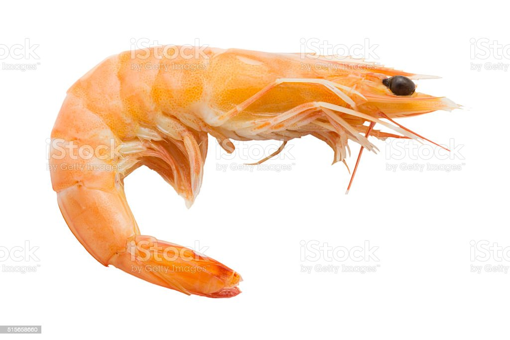 Boiled shrimp isolated on white background stock photo