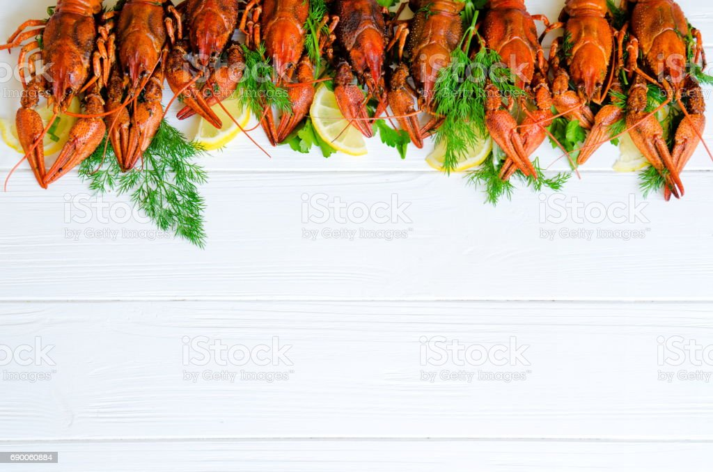 Boiled tasty river crayfish on white wooden background with fennel (dill) and lemon on the side stock photo