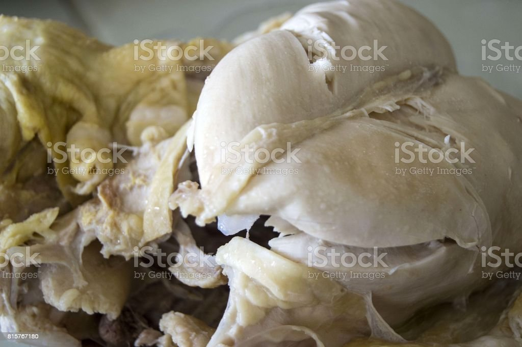 Boiled whole chicken paintings, boiled chicken tenderloin, chicken wing and chicken buttocks, stock photo