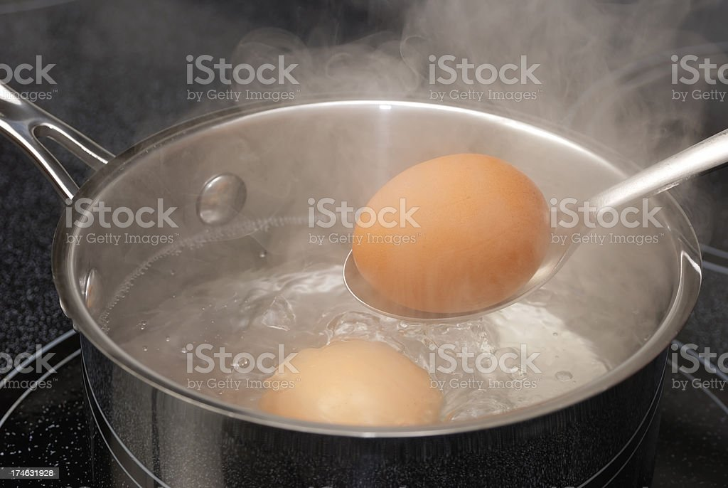 Boiling Brown Eggs stock photo