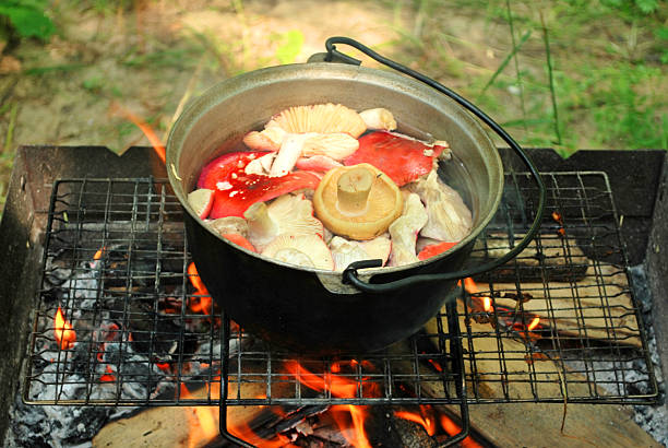 boiling mushrooms on fire in the forest stock photo