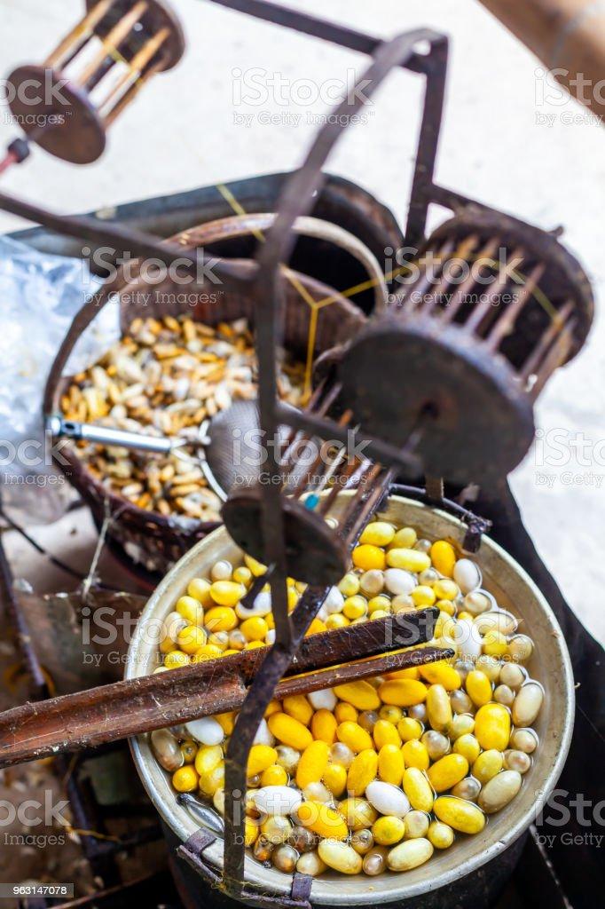 Kokande vit och gul silkeskokonger i potten för att göra Silk tråd, koka Silk Nest - Royaltyfri Asien Bildbanksbilder