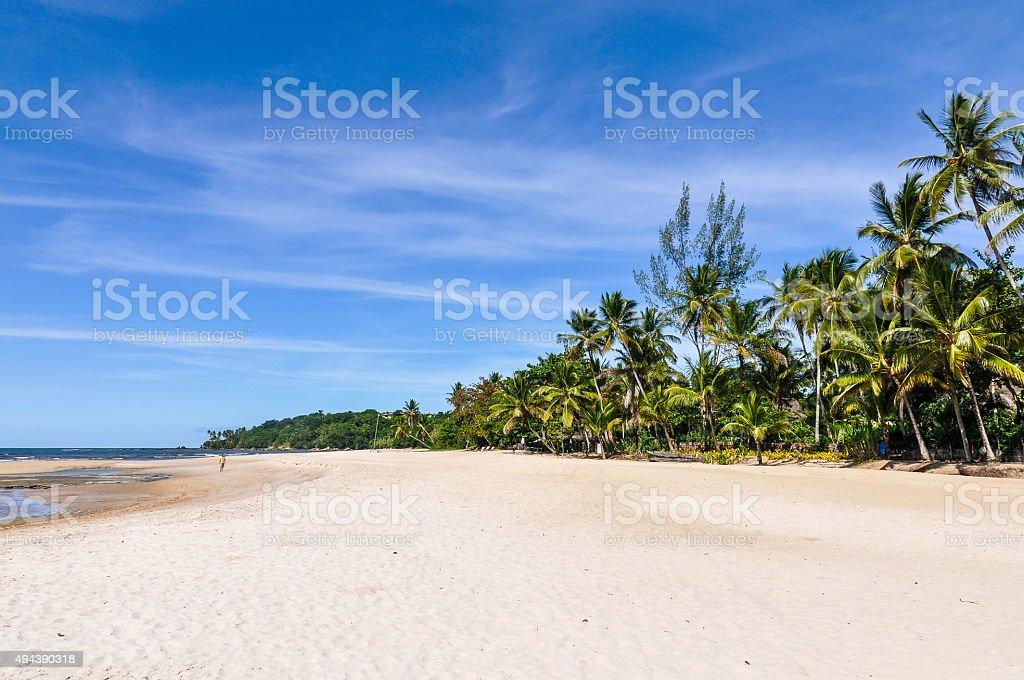 Boipeba Island Beach, Morro de Sao Paulo, Salvador, Brazil stock photo