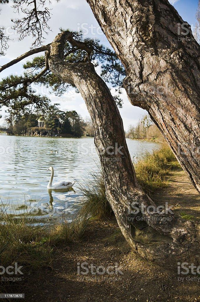 Le Bois de Vincennes - Photo