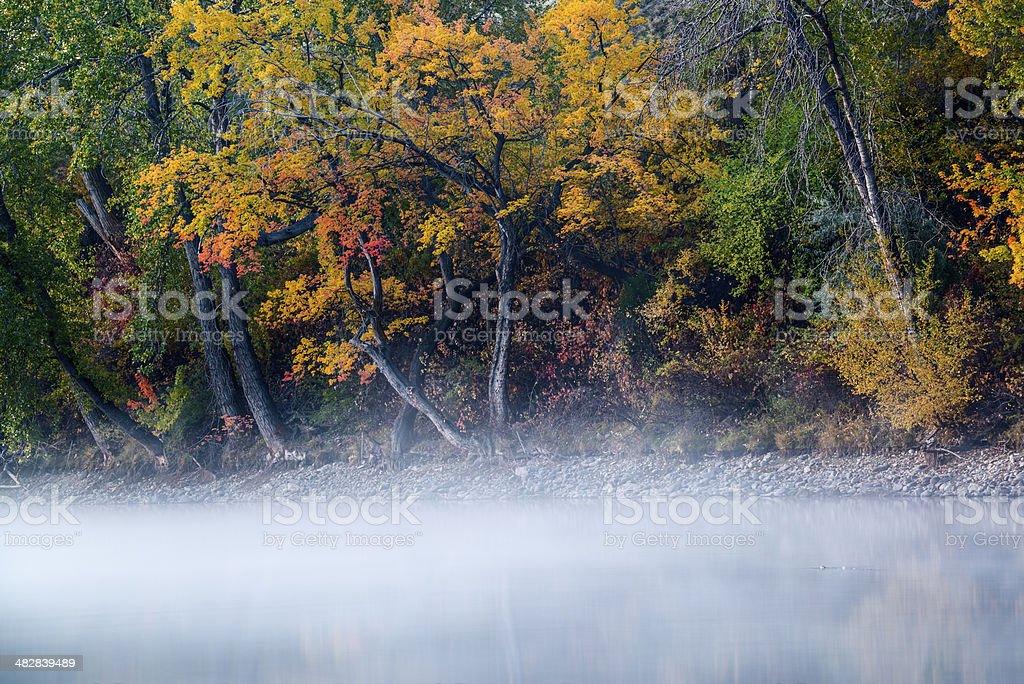 Boise River Autumn morning stock photo