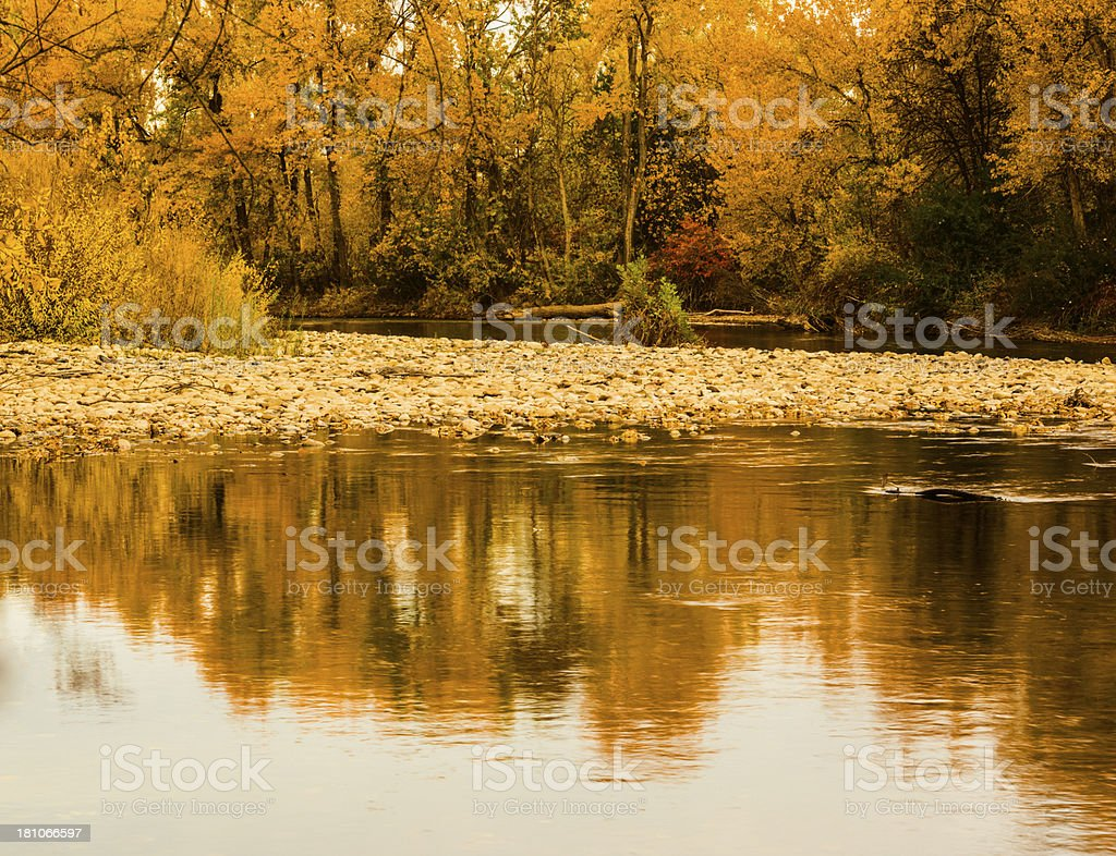 Boise River Autumn royalty-free stock photo