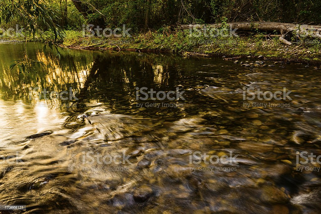Boise River royalty-free stock photo