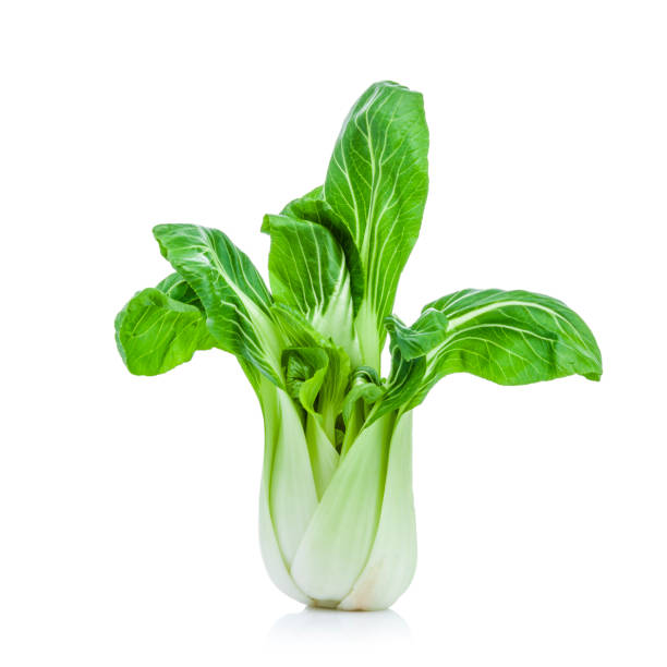 Bok choy isolated on white background Chinese Bok Choy cabbage also called Pak Cho isolated on white background. Predominant colors are green and white. DSRL studio photo taken with Canon EOS 5D Mk II and Canon EF 70-200mm f/2.8L IS II USM Telephoto Zoom Lens brassica rapa stock pictures, royalty-free photos & images