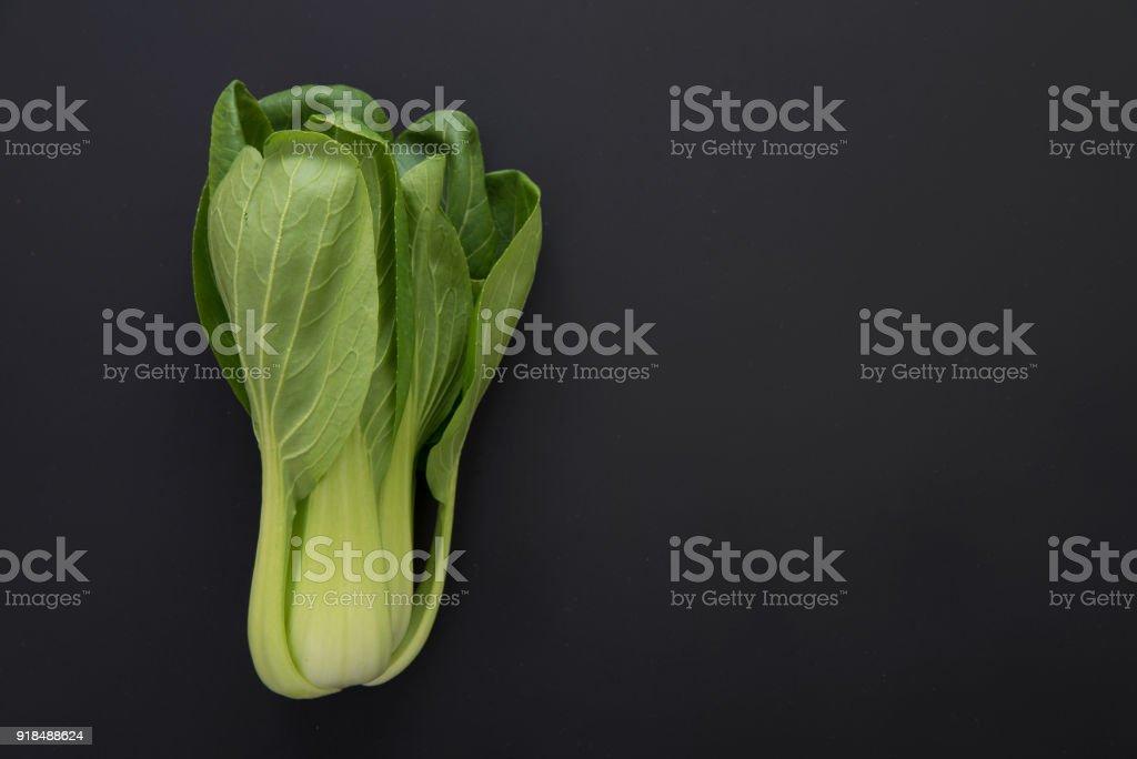 bok choy (chinese cabbage) stock photo