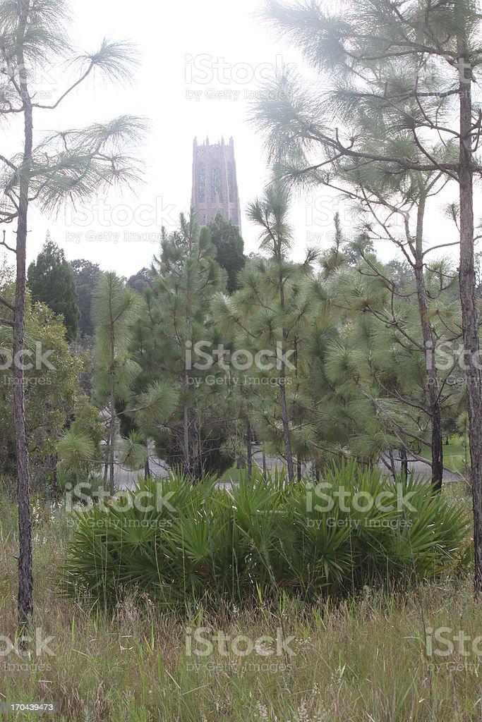 Bok Tower through the Trees royalty-free stock photo