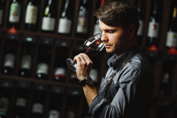 Bokal of red wine on background, male sommelier appreciating drink Sommelier smelling flavor of red wine in bokal on background of shelves with bottles in cellar. Male appreciating color, quality and sediments of drink. Professional degustation expert in winemaking. wine cellar stock pictures, royalty-free photos & images
