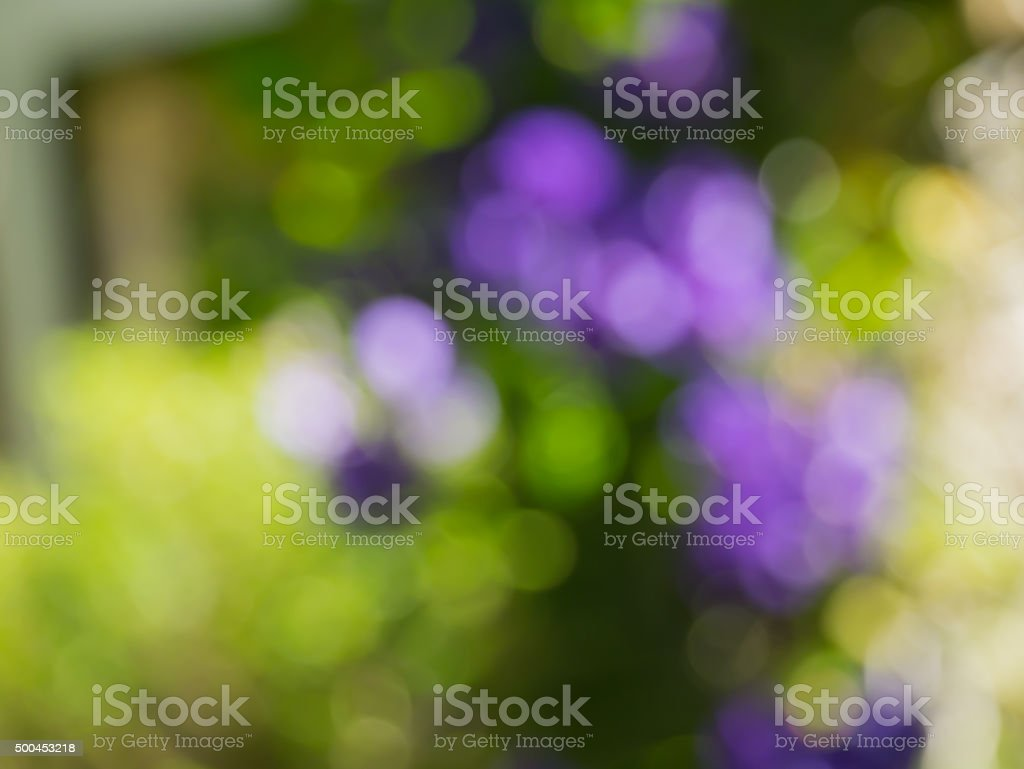 Bokeh background blur stock photo