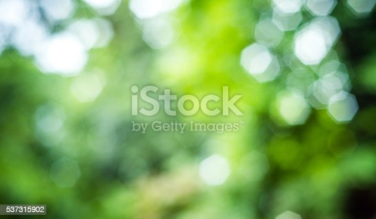 Bokeh background of nature