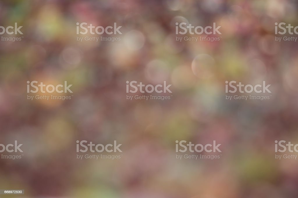 bokeh Backgrounds foto stock royalty-free