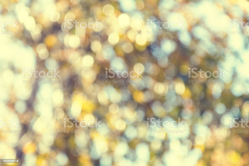 Bokeh blurred color light autumn color royalty-free stock photo
