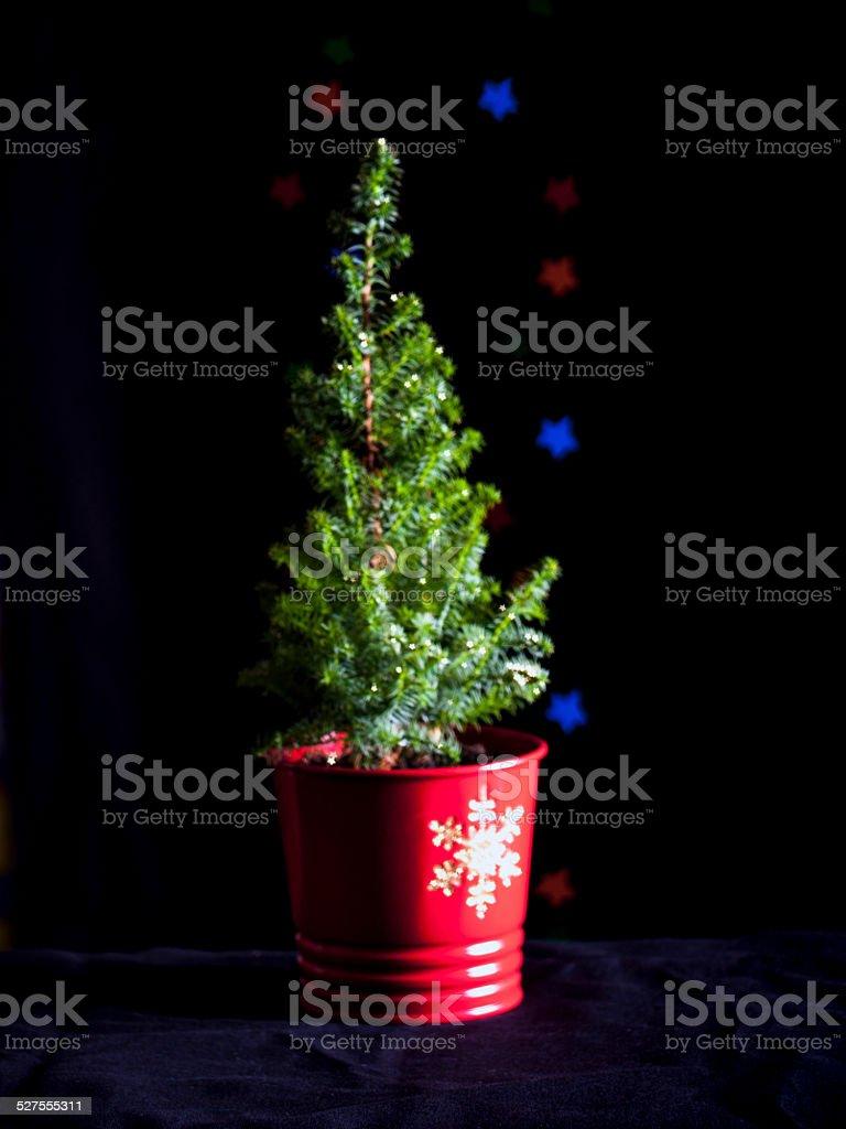 Bokeh Christmas Tree stock photo