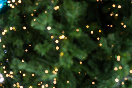 Bokeh of Light on Christmas tree
