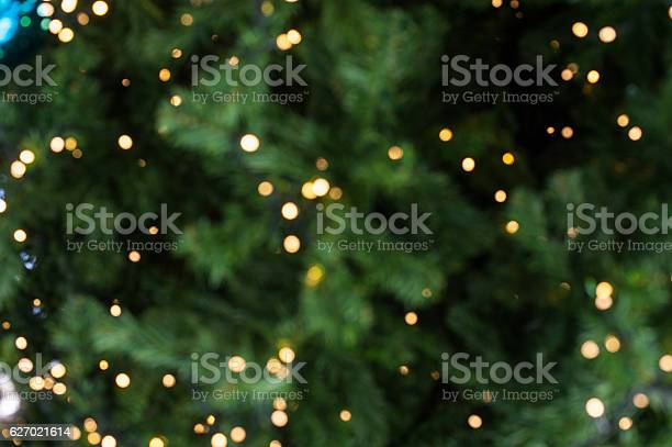 Bokeh of light on christmas tree picture id627021614?b=1&k=6&m=627021614&s=612x612&h=er tqgtrqkx2pvb7ak8hu ji4sqqrl0pbihz1p s7ns=