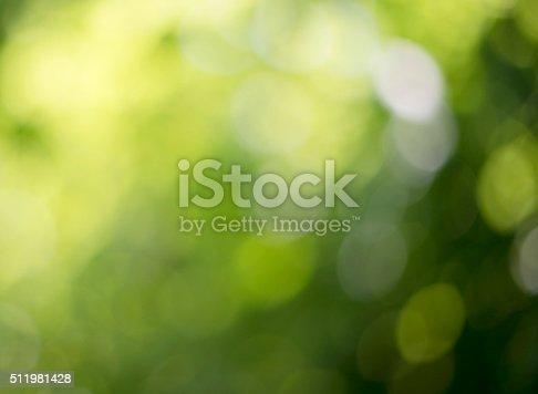 Background blur of nature in spring, full frae