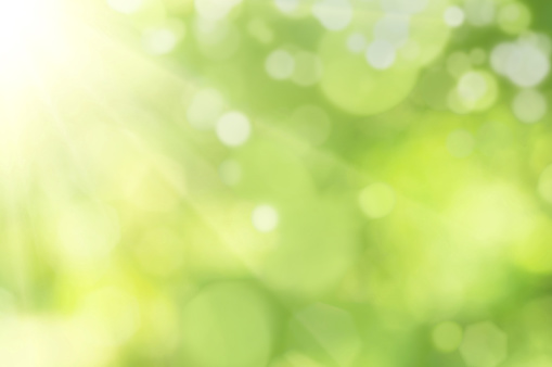 Bright glowing green nature background in the form of bokeh.