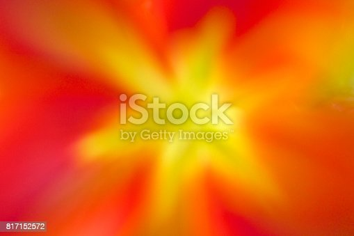 istock Bold Colors 817152572